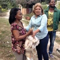 Diputada Noris Medina distribuye pollos y teleras en Barahona.